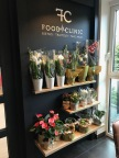 food clinic 1